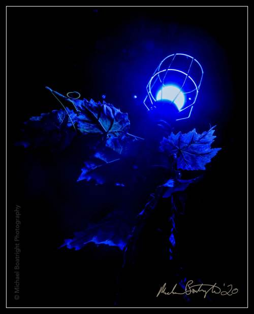DarkHouses-Balzer_MCB7442_websocial.jpg